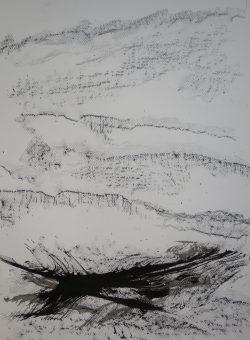 Ecriture de pierre et de plume IV, 2016 Encre de Chine et crayon graphite sur papier 65 X 50 cm