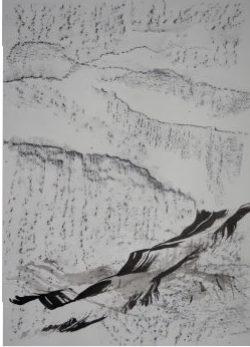 Ecriture de pierre et de plume VII, 2016 Encre de Chine et crayon graphite sur papier 65 X 50 cm